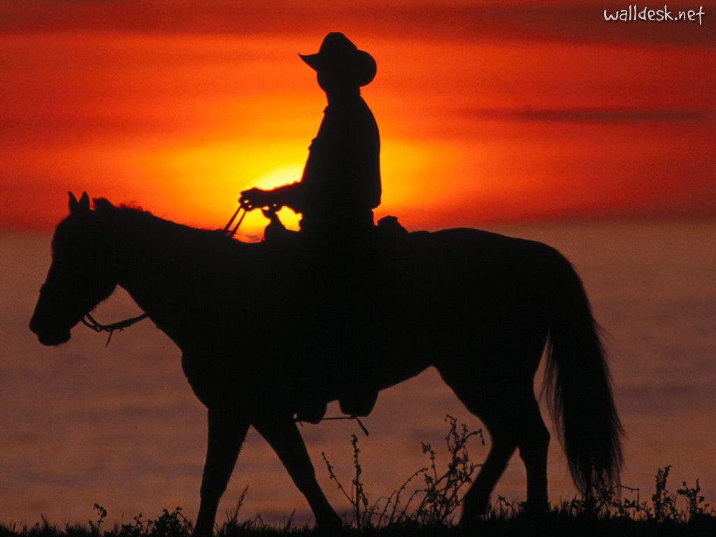 Http Stillmagnolias Blogspot Com 2014 06 The Cowboy Way Html